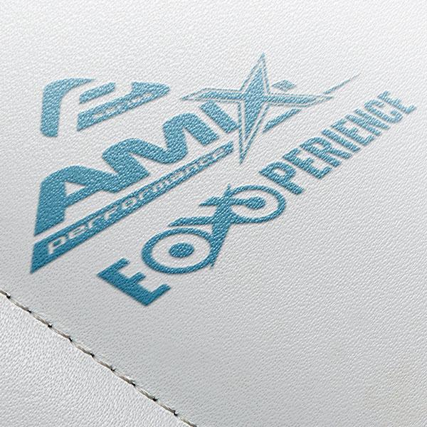 amix-experience-web.jpg